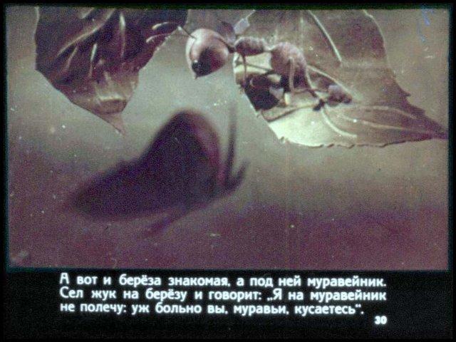 смотреть как муравьишка домой спешил