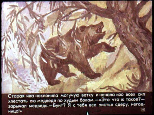 паустовский картинки дремучий медведь
