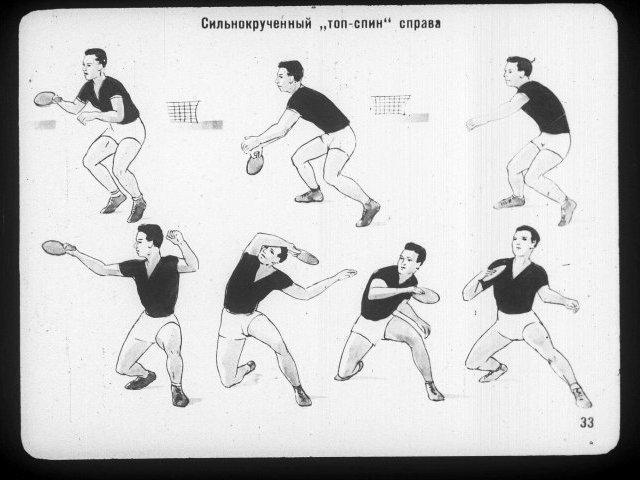 настольный теннис техника в картинках