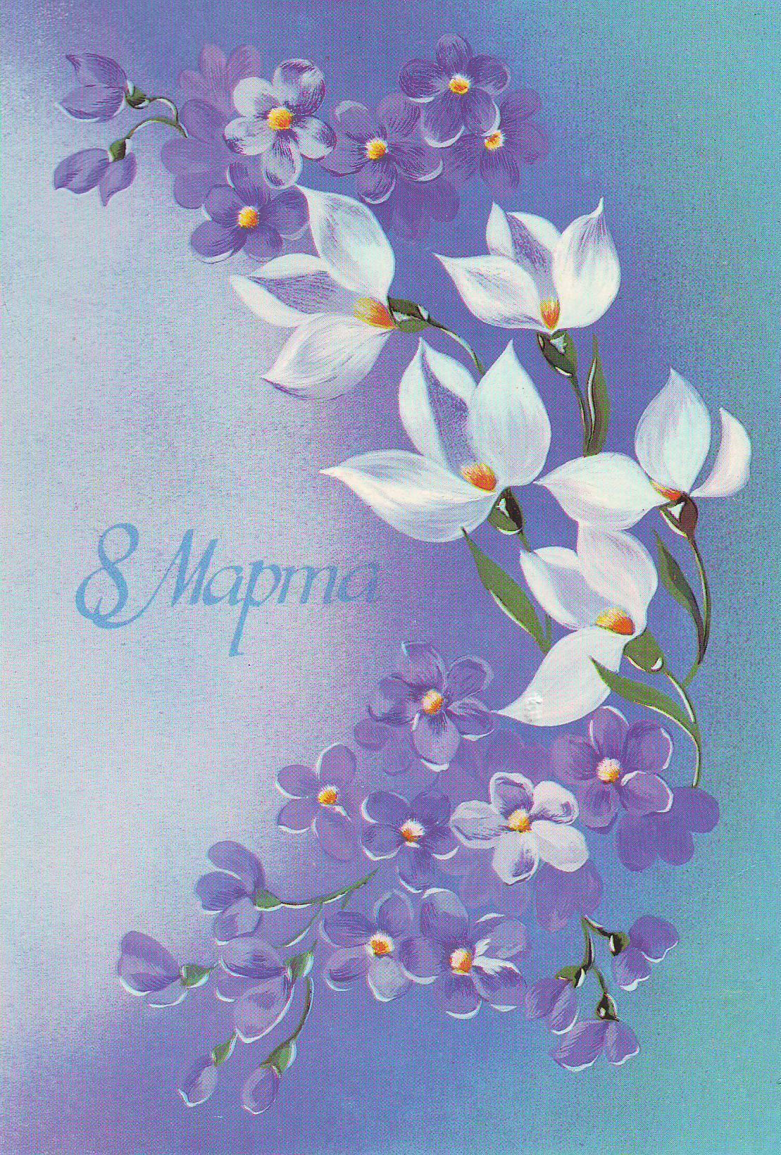 Открытки на 8 марта с цветами калами, прошел день прикольные