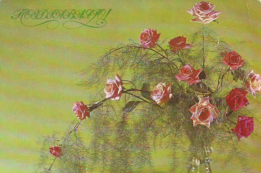 На открытках цветы ссср 31