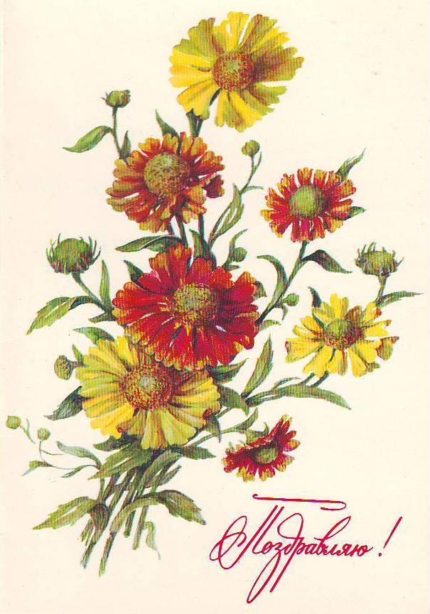 На открытках цветы ссср 13