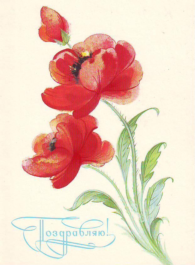 На открытках цветы ссср 33