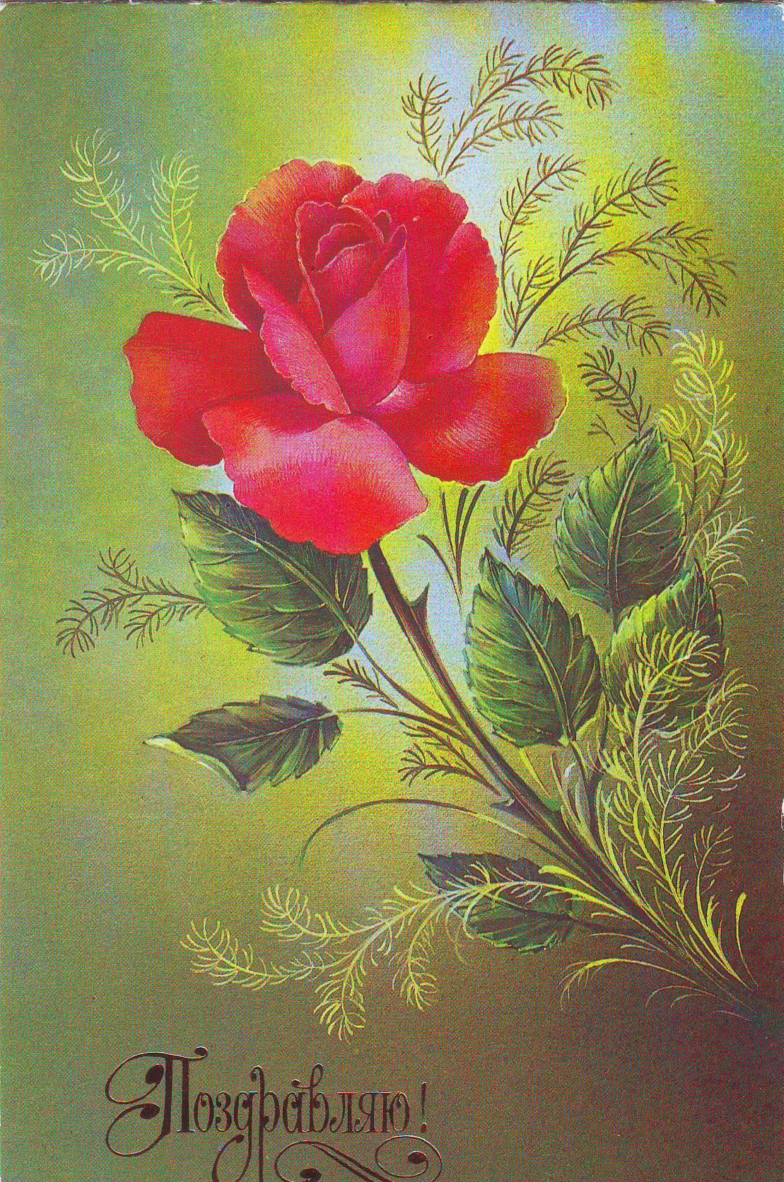 На открытках цветы ссср 10