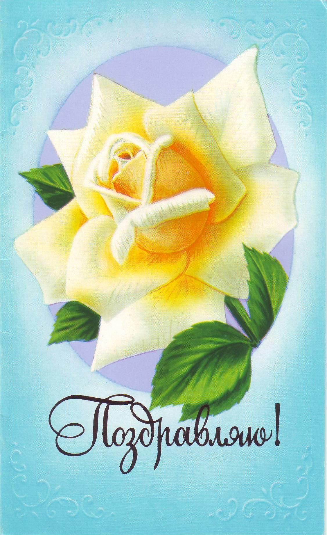 Шаблоны, открытки поздровляю