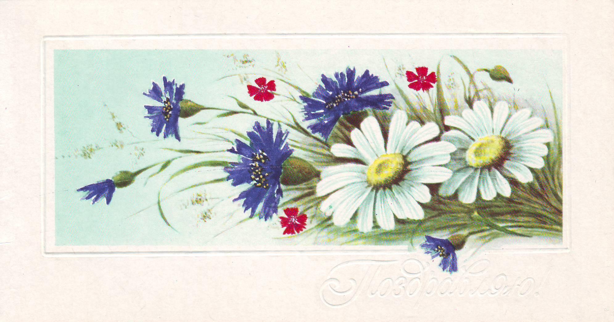 На открытках цветы ссср 41