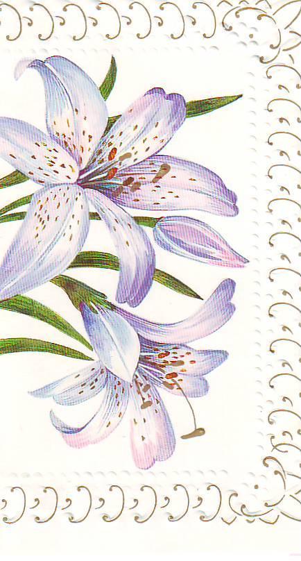 открытки на 8 марта с цветами лилиями