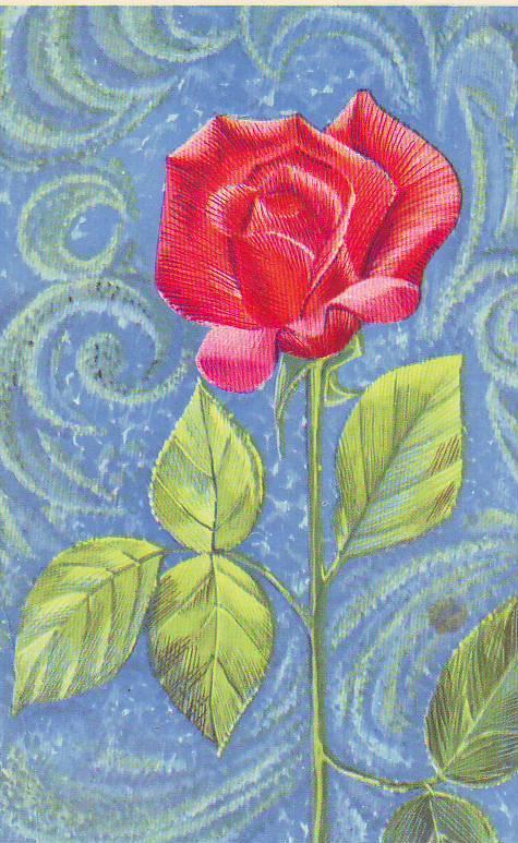Открытки с розами ссср