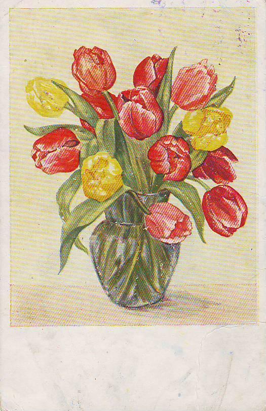 Веселый, открытка тюльпаны рисунок