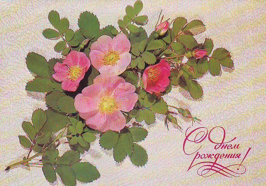 С днем рождения фото ссср, открытки новым годом