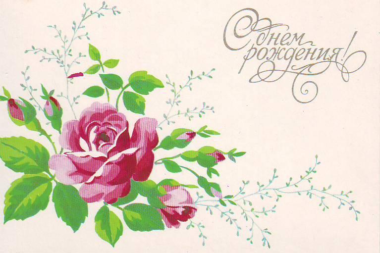С днем рождения цветок рисунок
