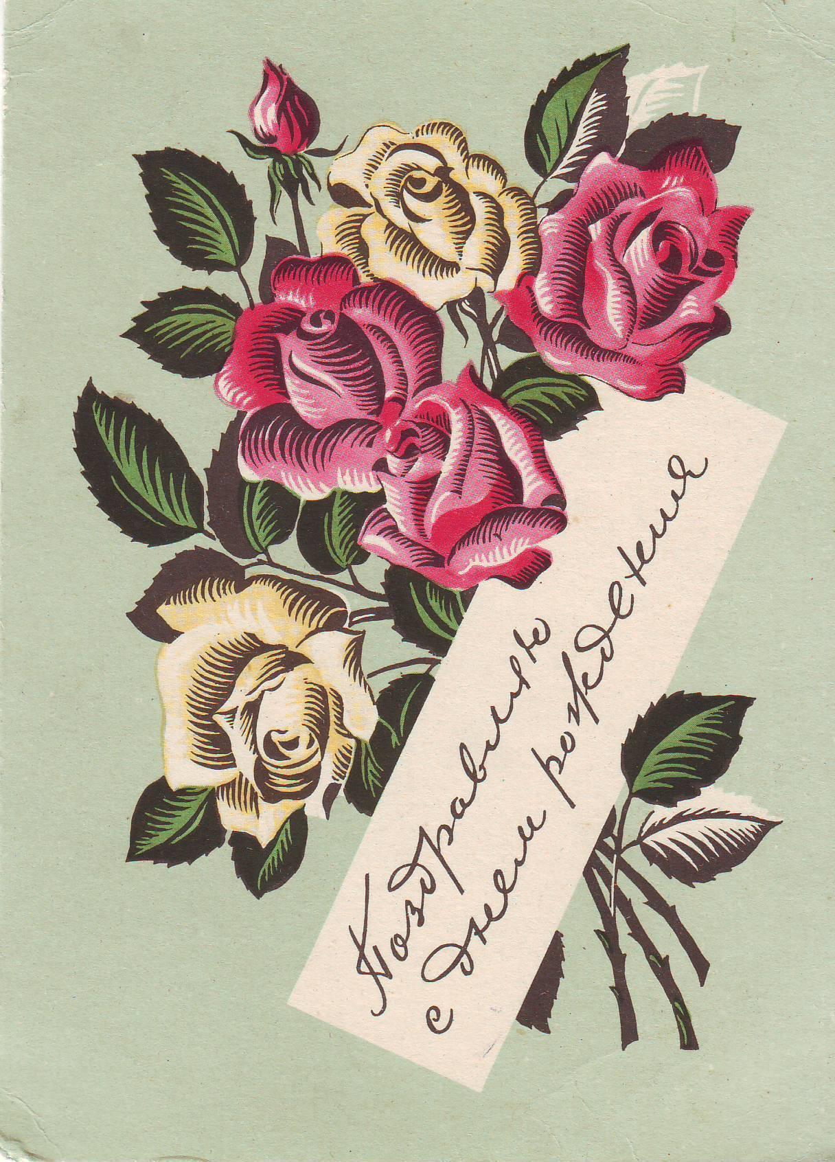 Финскими бабками, открытки цветок юности